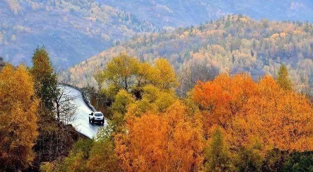 """这些让人欲罢不能的自驾天路,是新疆最超值的""""景点""""-61.jpg"""