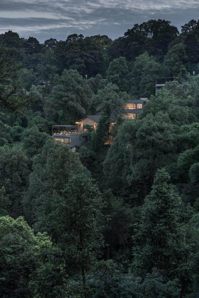南山别处民宿,重庆——南山中的隐士-1.jpg