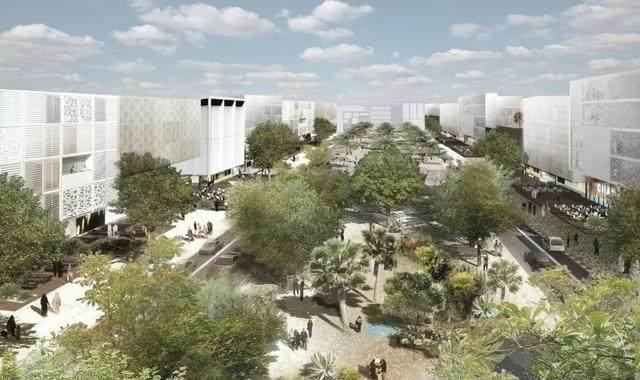 迪拜将建世界最大的高等教育自由区-1.jpg