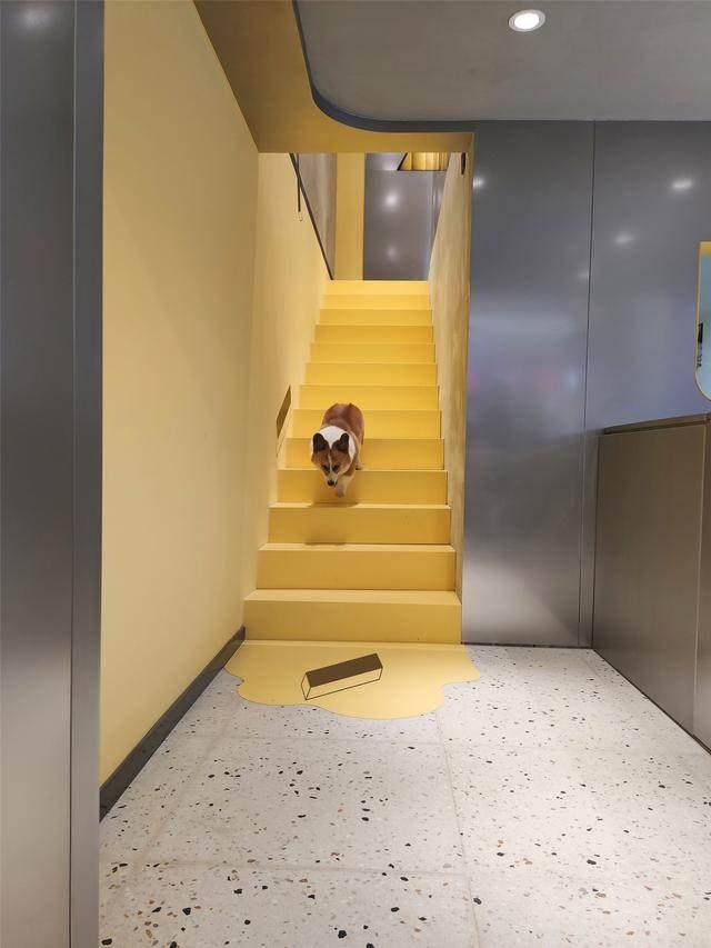 或者設計丨WAGASHI果子专门店,一次感官传达表现的实验-7.jpg