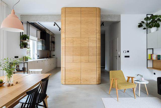 明亮简约的中世纪现代主义公寓,复古优雅的居住空间空间-5.jpg
