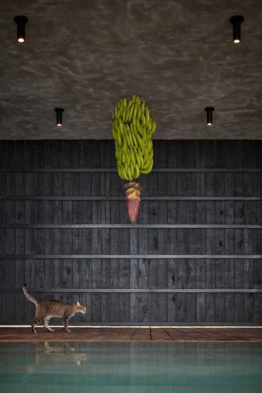 哥斯达黎加艺术别墅 Art Villas Costa Rica / Studio Formafatal