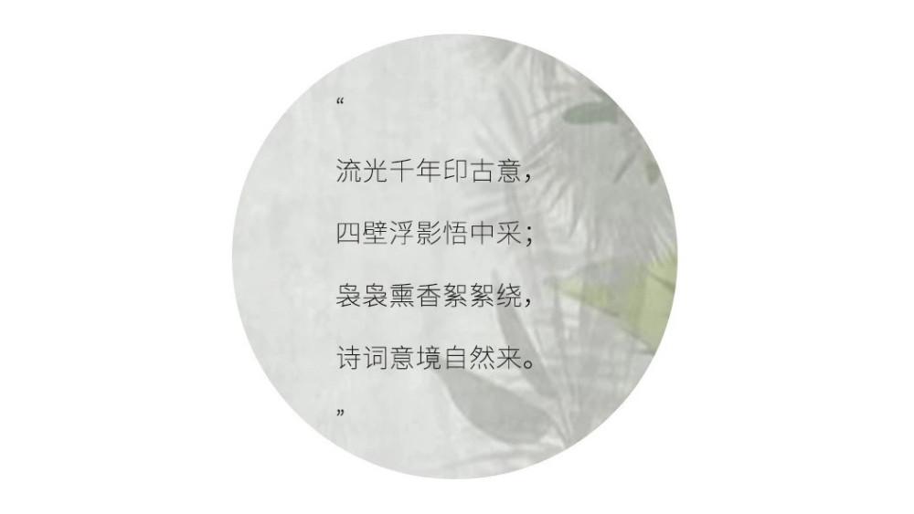 PIC0.jpg