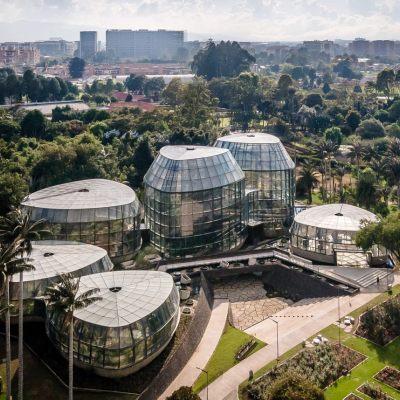 波哥大热带植物园(2020)DARP