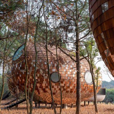 中国种子木屋|2020|休耕建筑