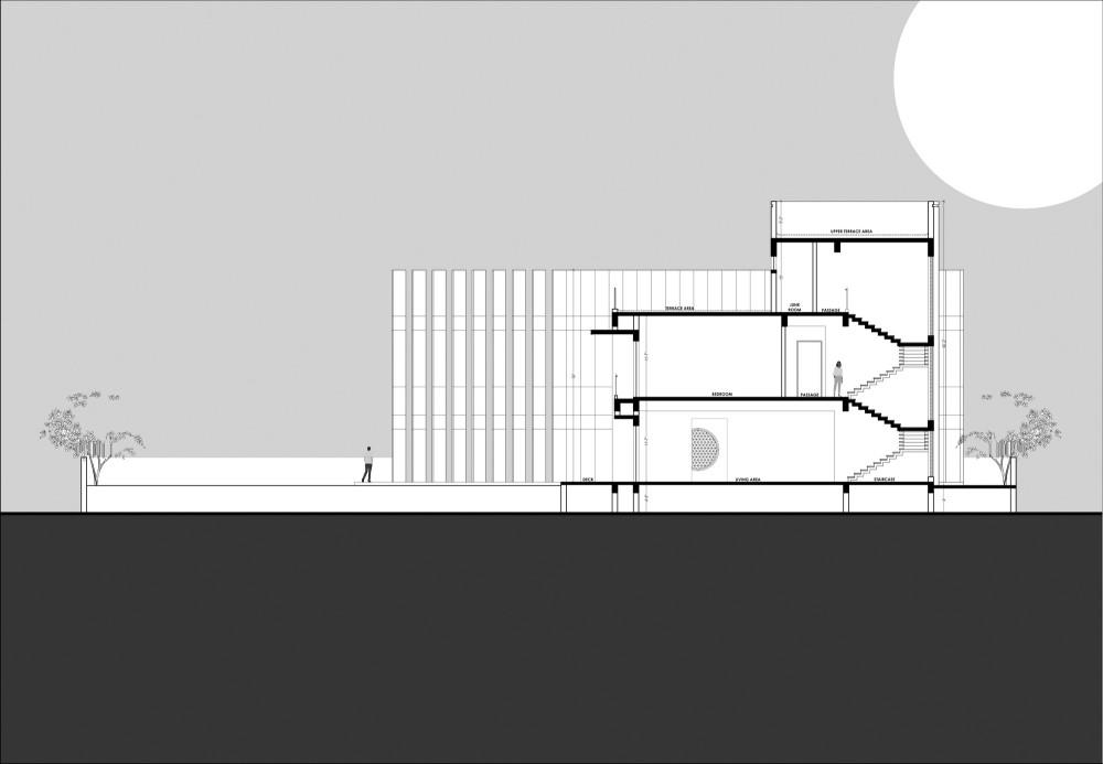Section_01.jpg