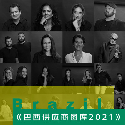 设计总监必备图库之Ⅰ《巴西装饰材料供应商产品图库2021》
