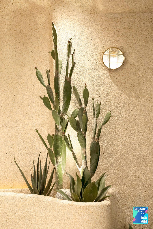TACO GO|植物花池与壁灯